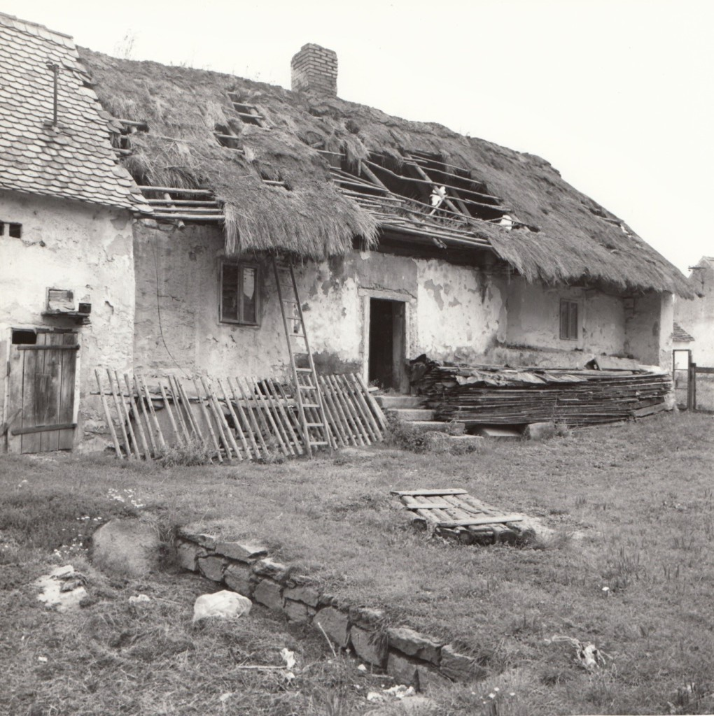 Dvůr objektu s patrným hnojištěm a studnou z roku 1811 (zakrytá dřevem), foto z přelomu 80. a 90. let minulého století před demolicí.